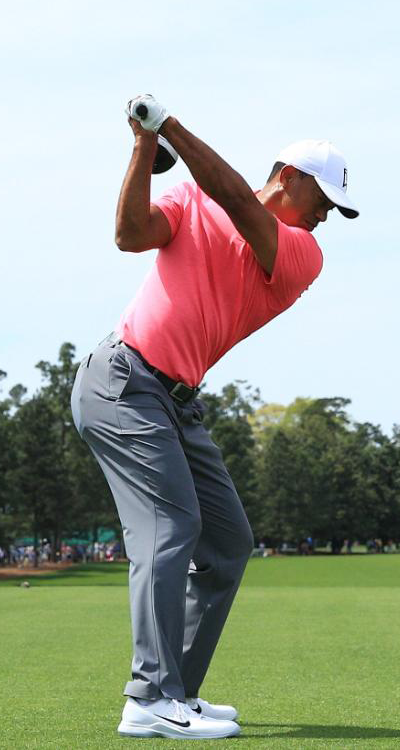 Tiger-Woods-Quail